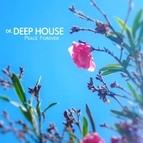 Dr. Deep House альбом Peace Forever