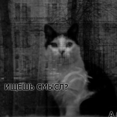 Сэмик Нажотов, 31 июля , Новосибирск, id35564269