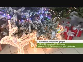 Центральная новогодняя ярмарка 19-23 декабря Казань Дверец Спорта Московская 1