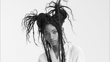 The Mutiny of Willow Smith