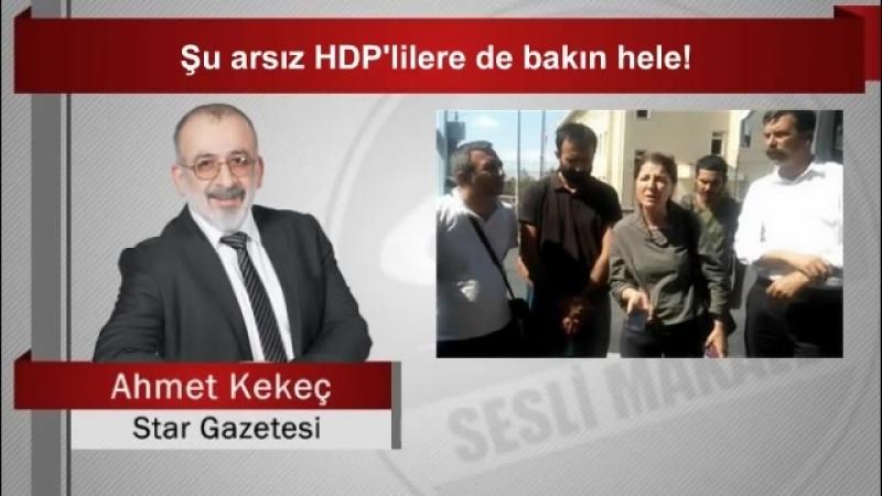 Ahmet KEKEÇ Şu arsız HDP'lilere de bakın hele!