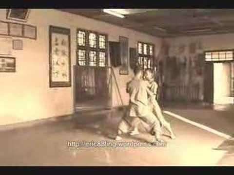 Wu Zu Quan / 5 Ancestors Boxing.
