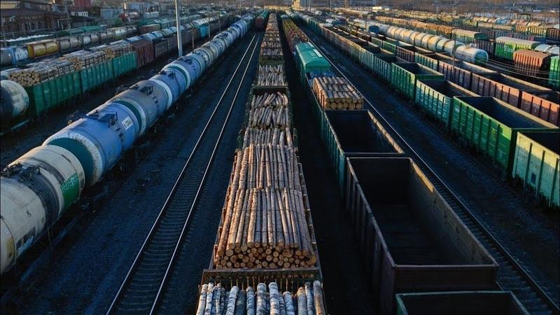 Бедность победят запретами на вывоз нефти металла и леса