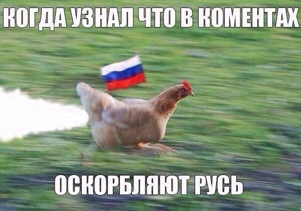 Украина и Россия проведут консультации по иску в ВТО, - Минэкономразвития - Цензор.НЕТ 6530