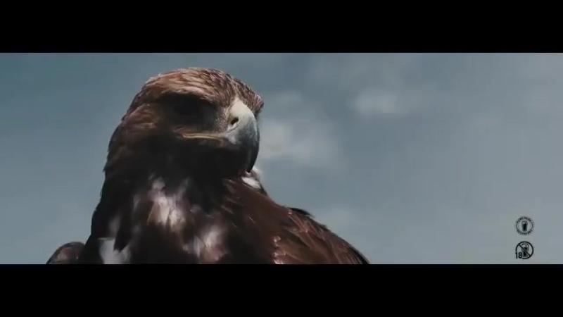 Premijera spota Orlovi za @FIFAWorldCup Sve što možeš - za Srbiju! - - JelenPivo FSS