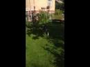 Video-45f2a1b8c927c57abe24b6e94fc4e38e-V.mp4