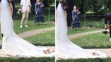 Playful cat snuggles up on a Chinese bride's wedding dress and REFUSES to move