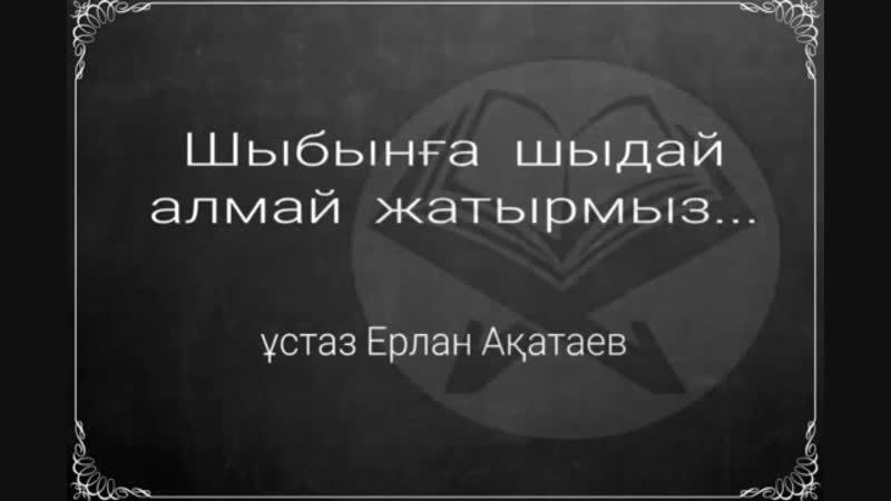 Шыбынға шыдай алмай жатырмыз - ұстаз Ерлан Ақатаев