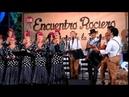 Cante y baile andaluz, Coro TREBOL de AGUA, Finca El Porton ALHAURIN de la TORRE 2018, 30/07