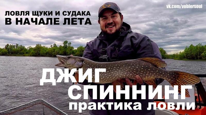 Ловля Щуки и Судака в начале лета. Джиг Спиннинг - Практика Ловли. Рыбалка 2018. Видео отчёт.