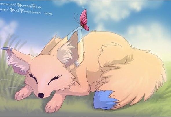 картинки аниме лисичек:
