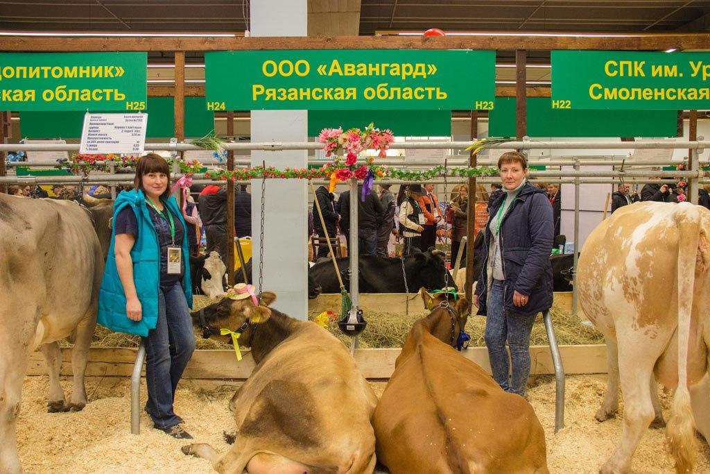 ВРязанской области вближайшие годы появятся 20 кооперативов