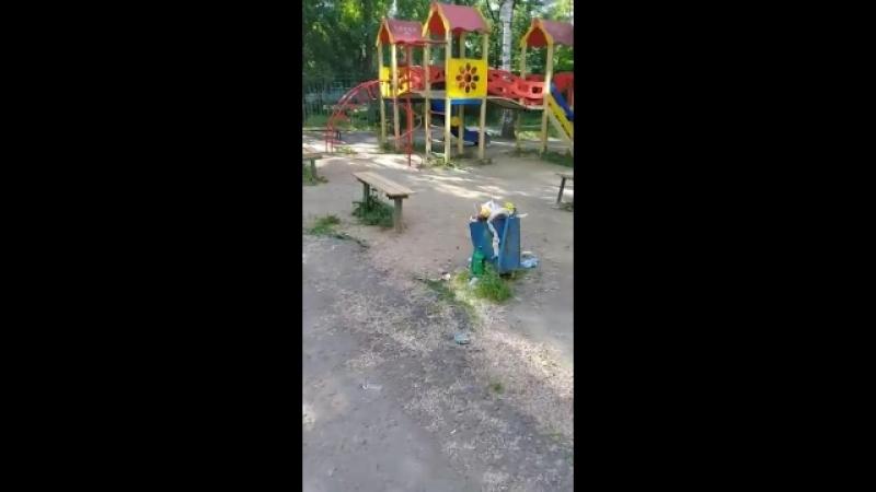 Экология на детской площадке около общежития №19