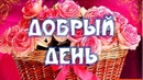 Хорошего Дня Отличного Настроения Любимая Моя! Видео Открытка Любимой Добрый День!