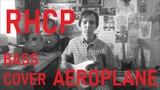 FLEGIN (САС) - Aeroplane (RHCP cover)