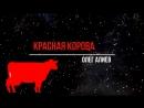 СРОЧНО Зачем сбили ИЛ 20 Красная корова Пришествие Машиаха или Апокалипсис