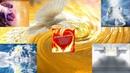 НАДЕЛЕНИЕ - АКТИВАЦИЯ ПОМАЗАНИЯ - ПОГРУЖЕНИЕ В СЛАВУ И ПОСВЯЩЕНИЕ ОТЦУ НЕБЕСНОМУ В ЕГО ДУХЕ ИСТИНЫ!!