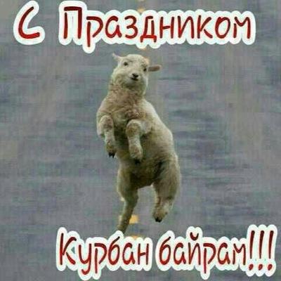 Зарема Ахмедова, 13 мая , Москва, id223986285