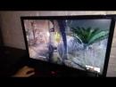 снайпер элит 3 на встроенном видео core i7-7700