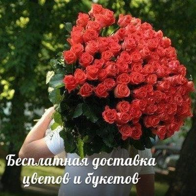 Κсения Μолчанова, 1 ноября , Киров, id202483712