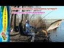Рыбалка на плотву подлещика густеру Розыгрыш СУПЕР ВОБЛЕРА