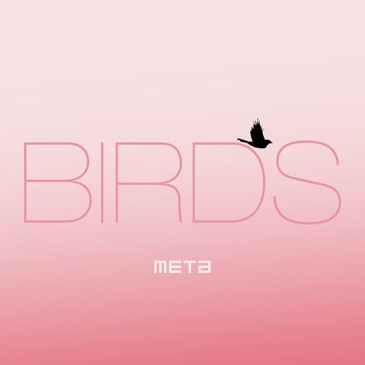 Meta альбом Birds