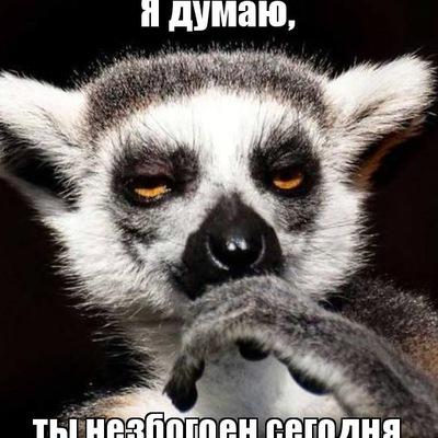 Михаил Девятнев