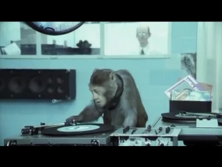 Basement jaxx where`s your head at ( official video ) rooty