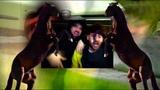FELLY &amp Drunken Masters - DICH MAG KEINER (feat. Carsten Chemnitz)