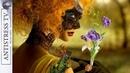 Это Сборник Самой Красивой на Свете Музыки! 11 Очень Красивых Мелодий ♥️