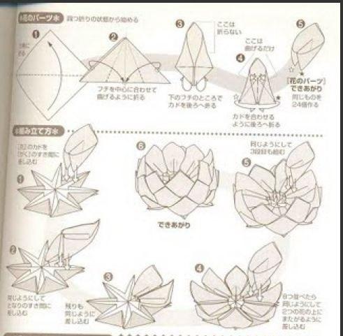 схемы больших бумажных цветов