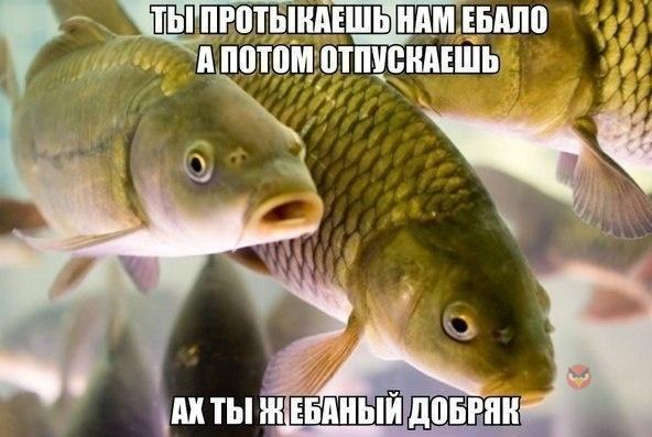 фото приколы про рыбалку с девушками