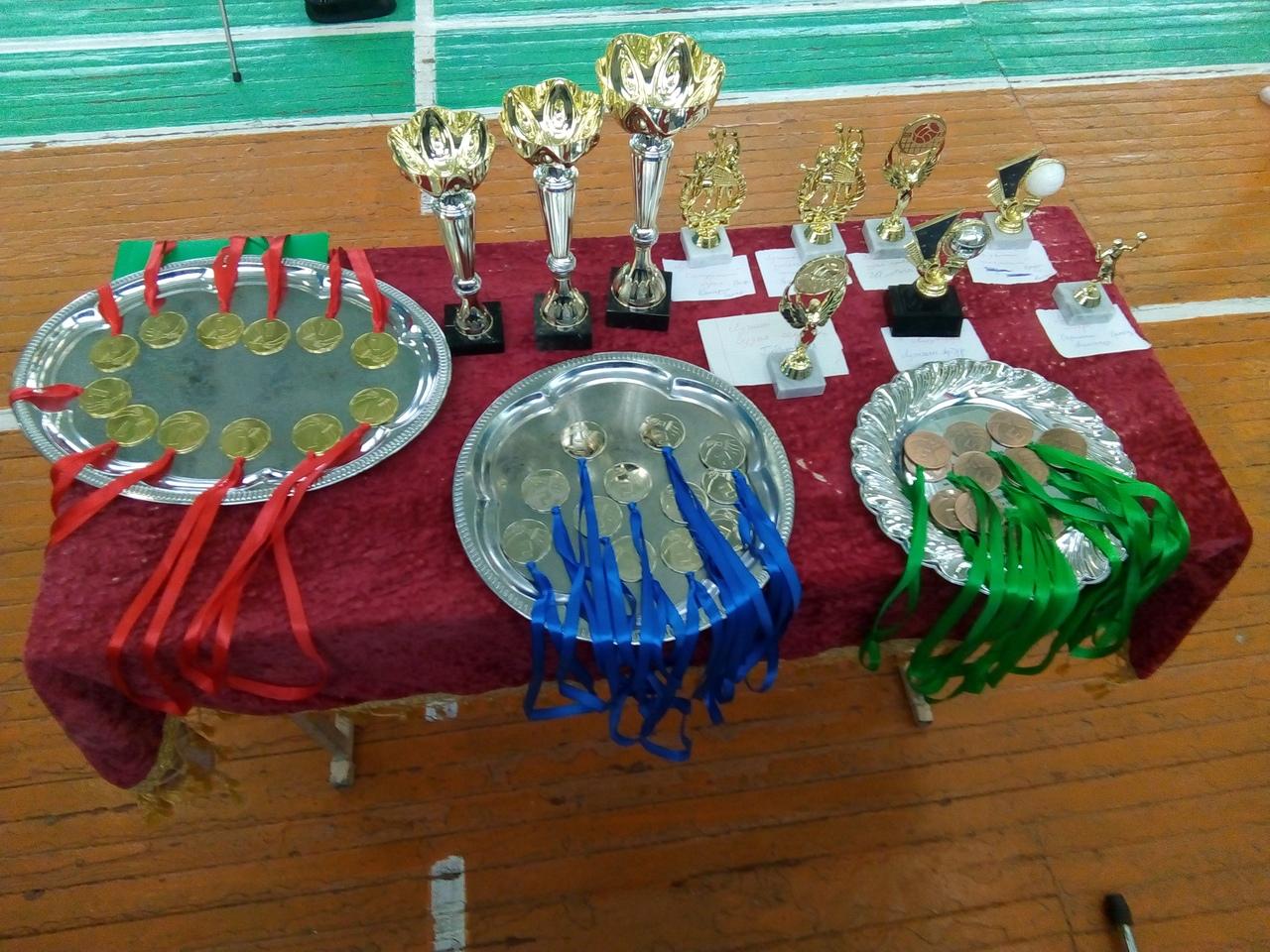 Завершились соревнования «Школьной волейбольной лиги» среди сборных команд районов
