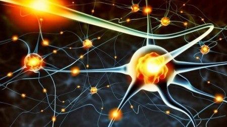 омолодження мозку - ліки від старості
