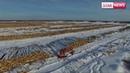 Жители Бурятии вышли на митинг ПРОТИВ вырубки китайцами леса в Сибири