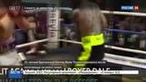 Новости на Россия 24  •  Смерть на ринге: британский боксер скончался от травм, полученных в бою