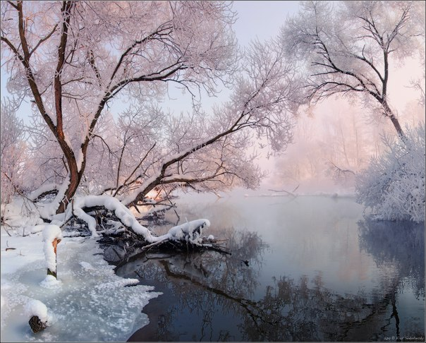 «Рождественские кружева». Утро на реке Свислочь, Республика Беларусь. Автор фото: Влад Соколовский.