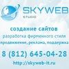 Создание, разработка и продвижение сайтов в СПб