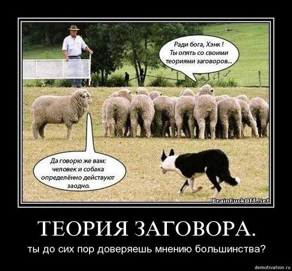 http://cs407431.vk.me/v407431379/74bf/30JUSm3OgxA.jpg