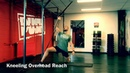 Top 17 Best Elastic Powerband and Resistance Belt Core Exercises