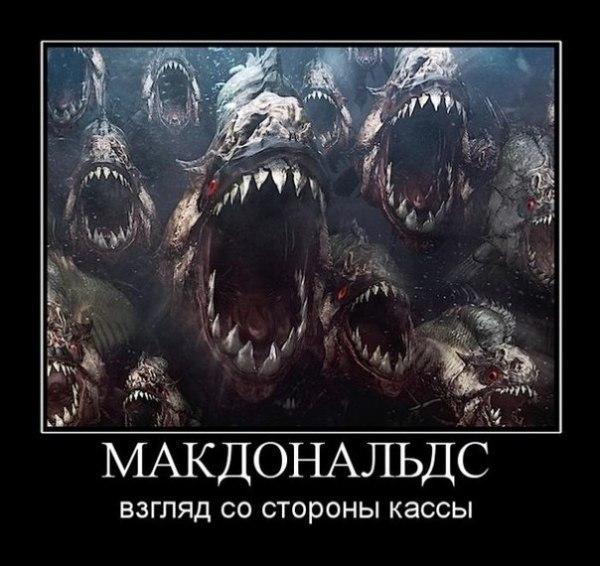 http://cs14115.userapi.com/c7008/v7008113/236e/nwCZrhiAsoU.jpg