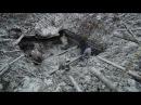 Эпичные Раскопки немецкого Блиндажа Вторая Мировая Excavations of German dugout