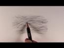 Несколько способов рисования шерсти животных карандашом