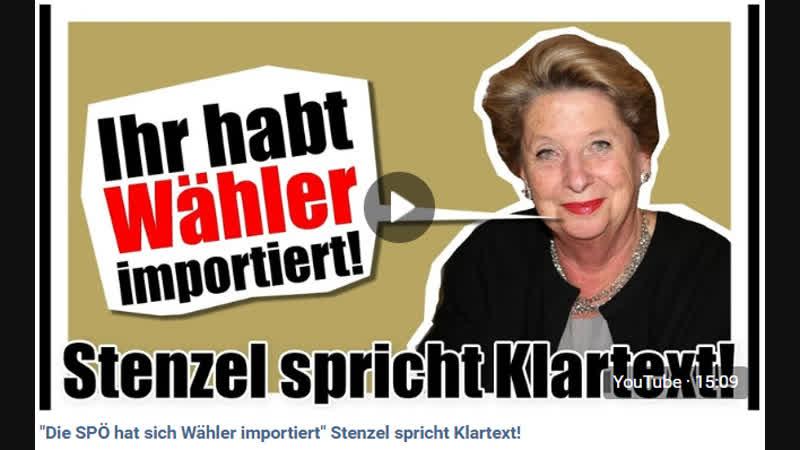 Die SPÖ hat sich Wähler importiert Stenzel spricht Klartext