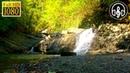 Успокаивающий Шум Водопада. 1 Час Белого Шума Для Сна и Расслабления