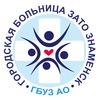 Городская больница ЗАТО Знаменск