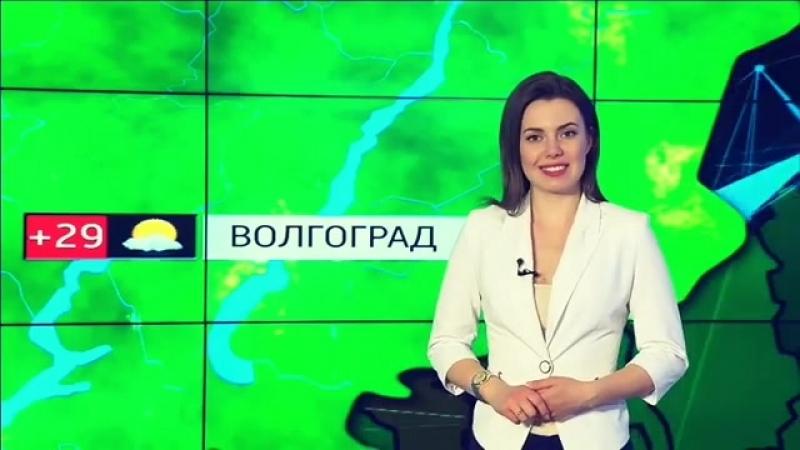 Веселые Вести Волгоград