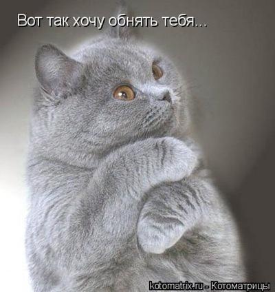 Александр Протасов, 31 марта 1975, Макеевка, id207523737