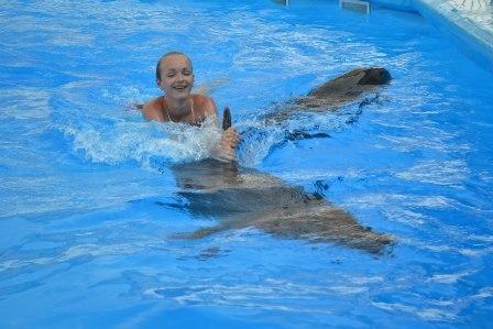 с дельфинчиком
