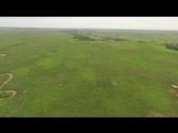 Полёт с аистами